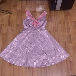 lily pulitzer size 2 dress